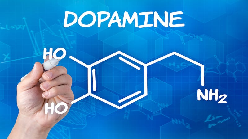 How to Harness Your Brain's Dopamine Supply and Increase Motivation