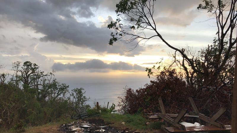 Overlook from Simon Walsh's house in Dominica. All images: Andrew Thaler