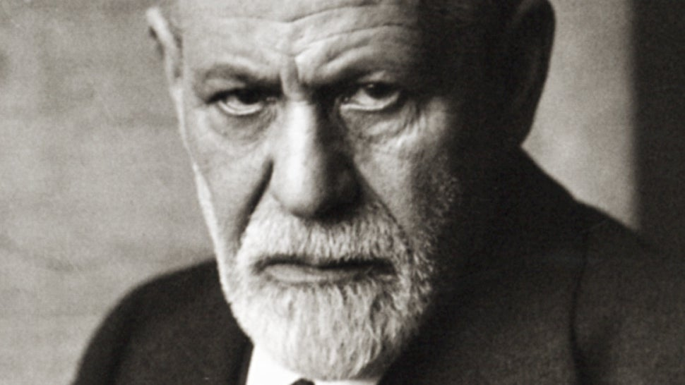 My essay on freud