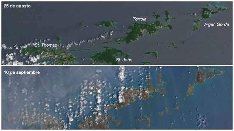 Imagen: Operational Land Imager (OLI) en el satélite Landsat 8 de la NASA vía Joshua Stevens / NASA Earth Observatory