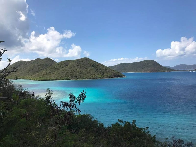 U.S. Virgin islands National Park in St. John (Yesha Callahan)