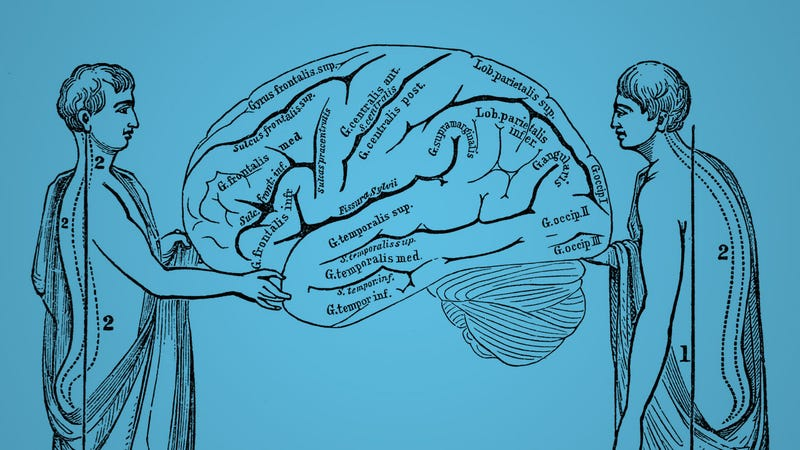 Illustration for article titled The Science Behind Posture and How It Affects Your Brain