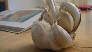 Illustration for article titled Microwave Garlic to Make It Even Easier to Peel