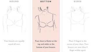 Illustration for article titled Ex-Microsoft Employees Create Algorithm for the Perfect-Fitting Bra