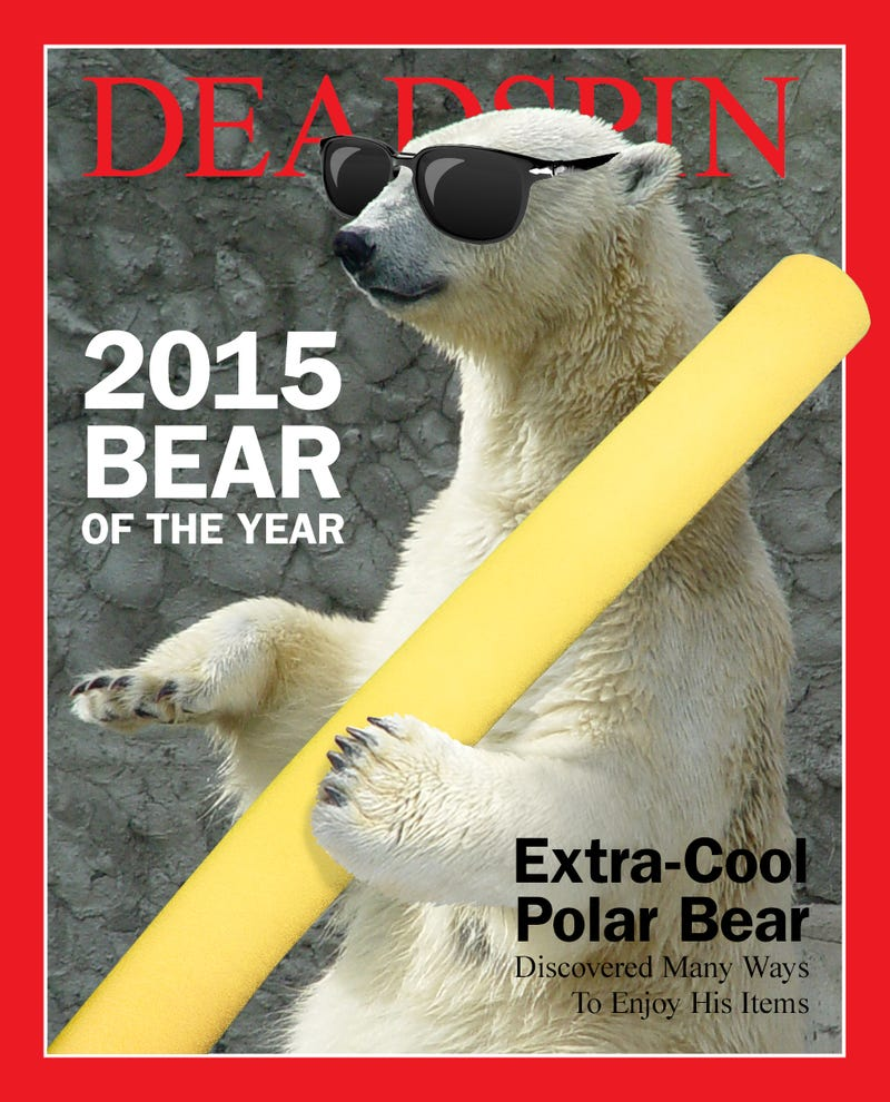 Illustration for article titled The 2015 Deadspin Bear Of The Year