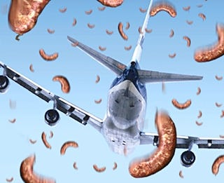 Illustration for article titled Sausage Storm Grounds Nation's Airliners
