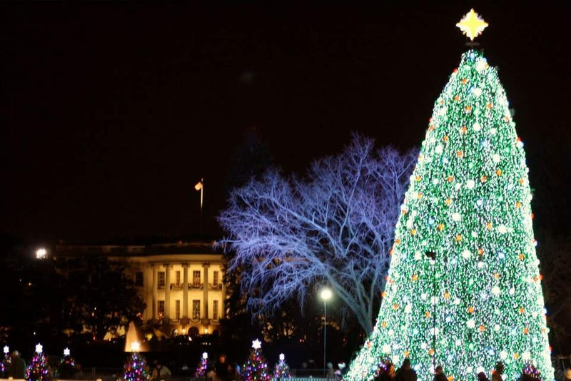How Christmas Tree Lights Evolved From Major To Mild Fire Hazard