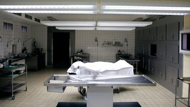 Shocked Authorities Discover Dozens Of Bodies Being Kept In Hospital Morgue