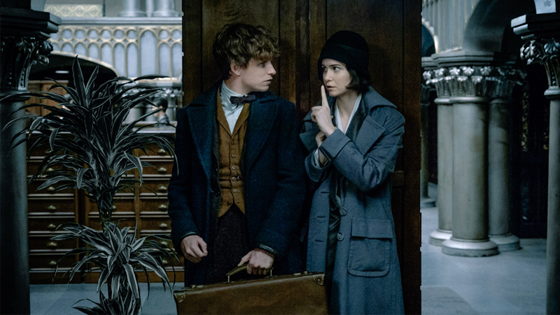 Sounds Like a Major Harry Potter Character May Appear in Fantastic Beasts