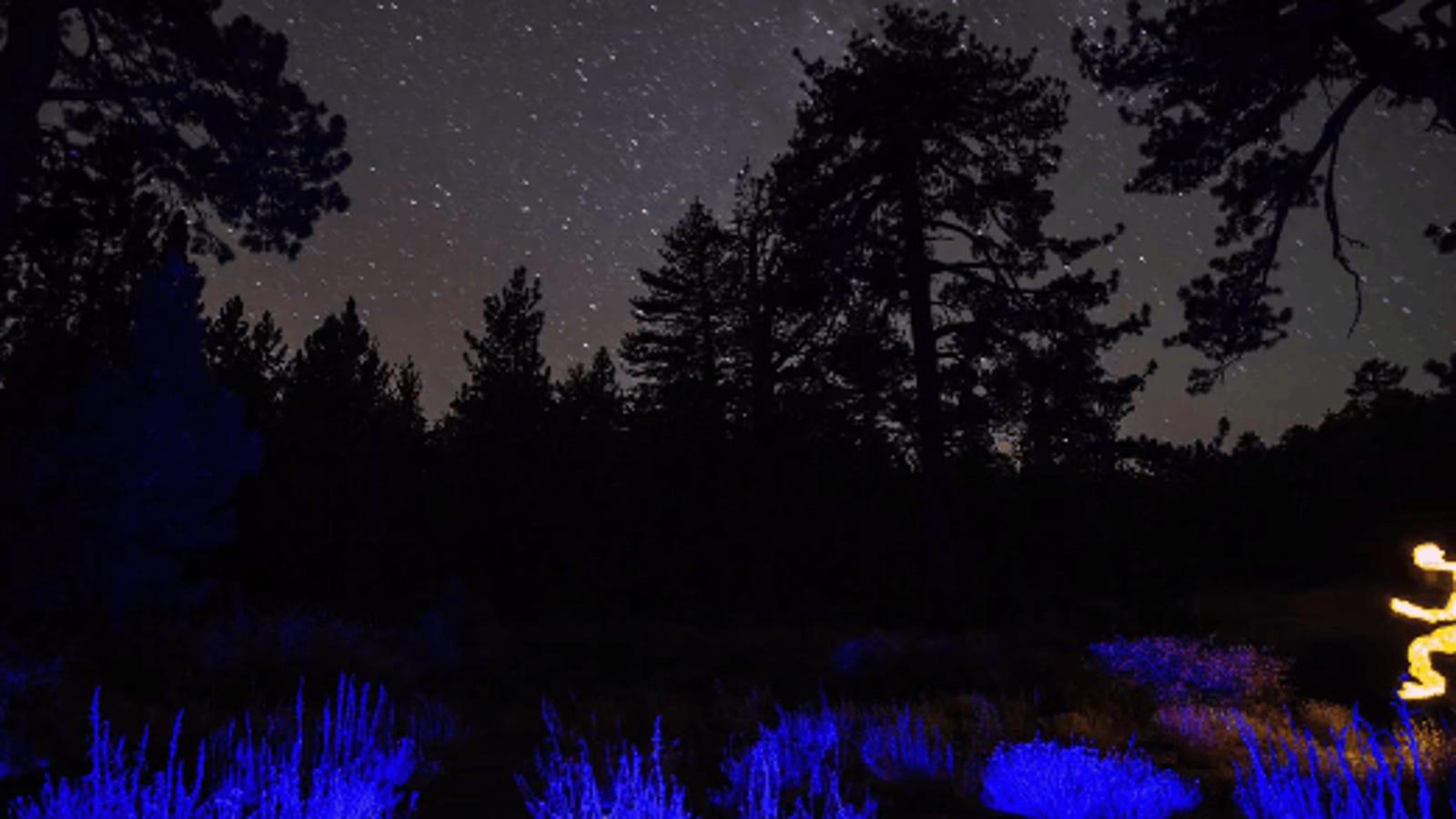 Este fascinante cortometraje está hecho usando pinturas de luz