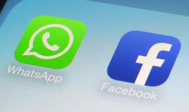 """Illustration for article titled El gobierno debería separar WhatsApp de Facebook, según el creador de la expresión """"neutralidad de la red"""""""