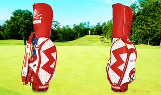 Illustration for article titled Here's an Officially Licensed Mario...Golf Bag