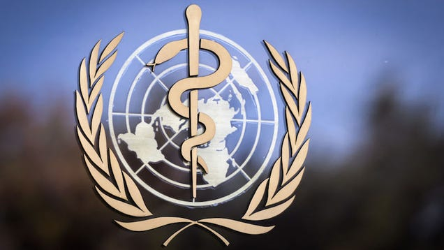 WHO Is Launching a Coronavirus Symptom Checker App for Countries That Do Not Have One: Report