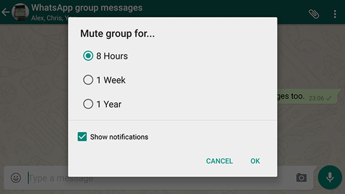 10 Tricks to Make Yourself a WhatsApp Master