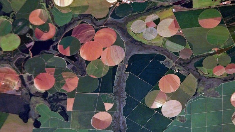 Satellite photos of farms in Brazil, Image: NASA's Earth Observatory