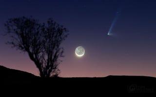 Illustration for article titled La luna y un cometa de dos colas reunidos en una imagen espectacular