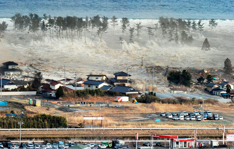 What Are The Long-Term Problems Facing Tsunami Survivors?