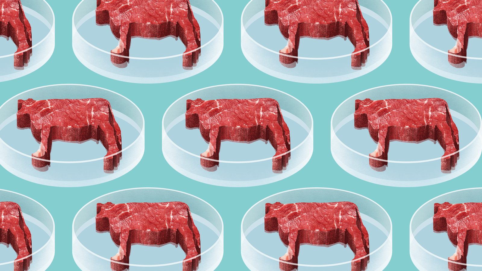 Behind the hype of lab grown meat biocorpaavc Images