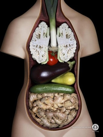 Illustration for article titled Vegetarians: You Are What You Eat