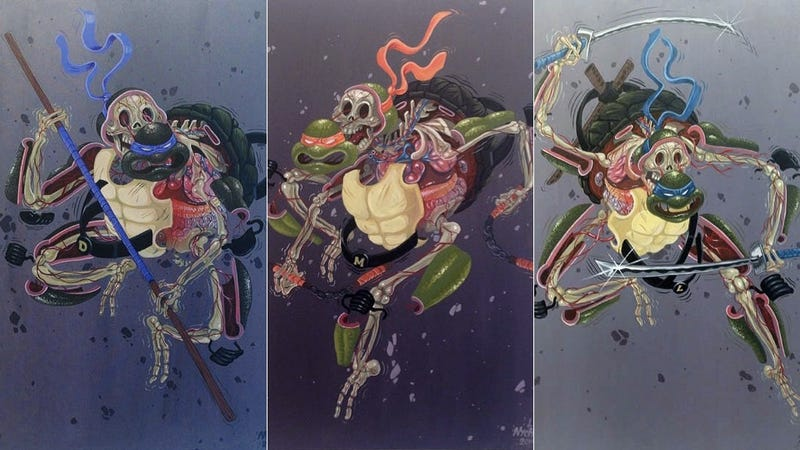 Illustration for article titled Here Is What The Teenage Mutant Ninja Turtles Look Like On The Inside