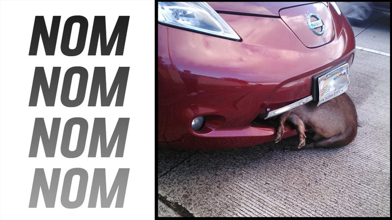 Illustration for article titled Conclusive Proof That The Nissan Leaf Doesn't Save Nature