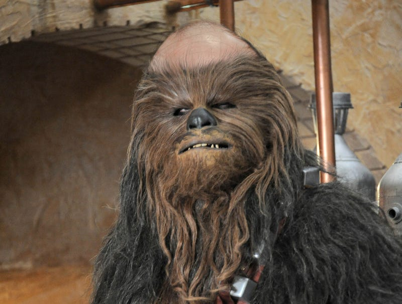 Illustration for article titled Leaked 'The Last Jedi' Footage Reveals Chewbacca Balding Since 'The Force Awakens'