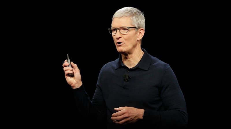 Illustration for article titled Tim Cook Says He Will Mercifully Spare Us a Run for Office