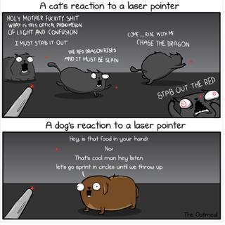 Illustration for article titled funny bone time!