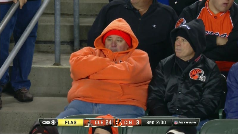 Illustration for article titled Bengals Fan Is Having A Wonderful Time