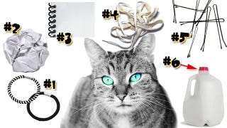 Illustration for article titled Keep Your Cats Entertained with These Household Items