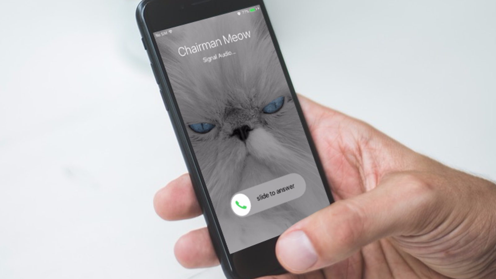 How to Use Signal Without Revealing Your Private Phone Number
