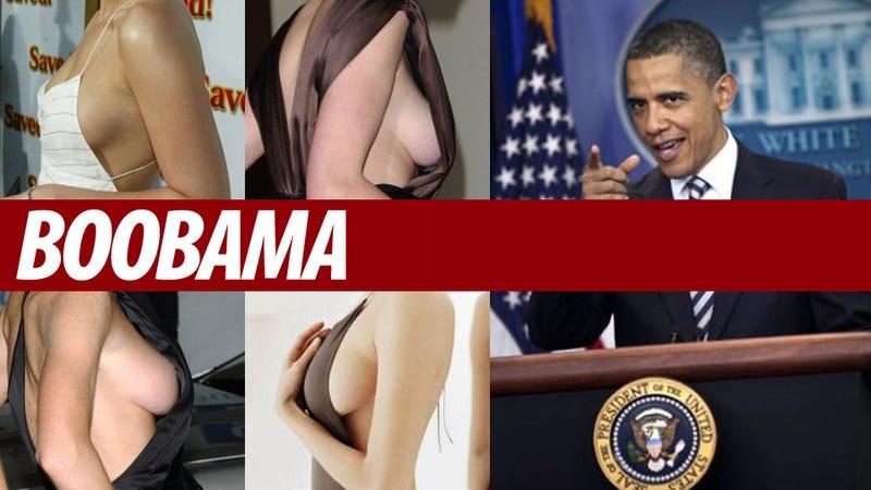 Illustration for article titled Barack Obama Follows Erotic Website On Twitter