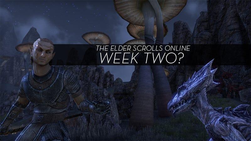 Illustration for article titled The Elder Scrolls Online MMO Log: I Suppose I Should Be Playing