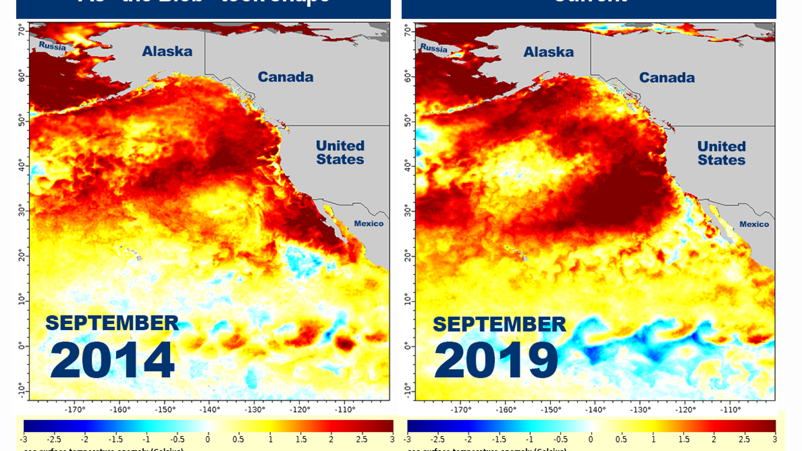 A Supercharged Marine Heat Wave Is Roasting the Pacific