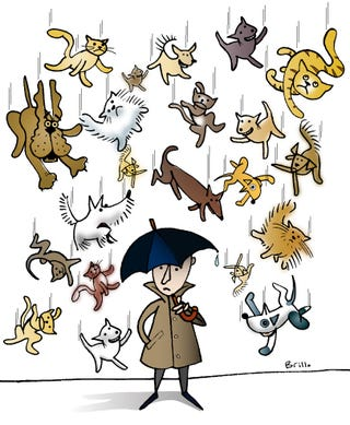 Illustration for article titled It's raining cats and dogs.