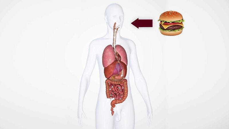 Illustration for article titled Lunch Barely Misses Area Man's Vital Organs