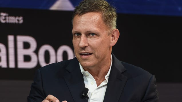 Peter Thiel-Backed Psychedelics Firm Buys Majority of Brain-Control Interface Firm