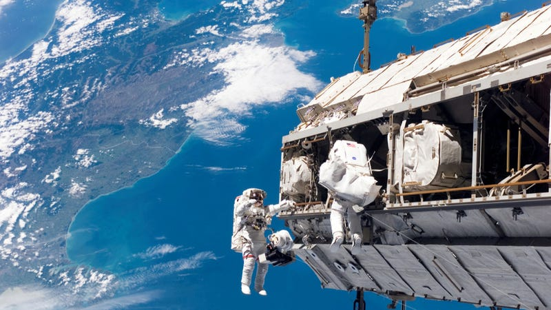Illustration for article titled Watch today's spacewalk, live on io9!