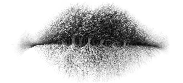These beautiful pencil drawings by artist christo dagorov transform