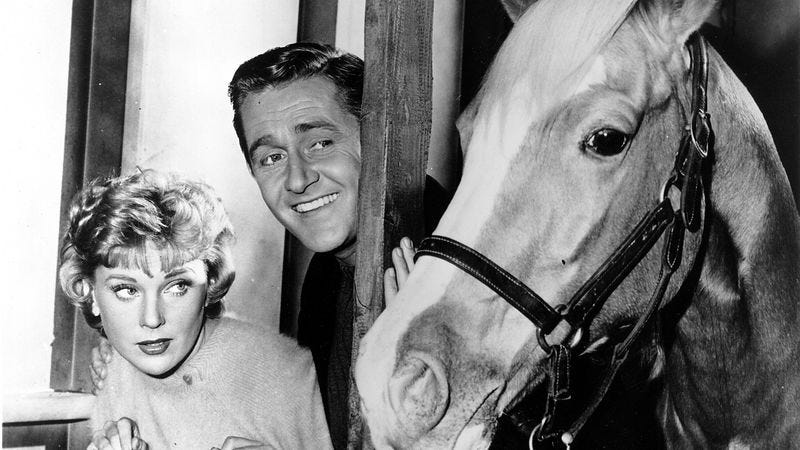 Illustration for article titled Mister Ed beat a pair of sitcom trends by a nose