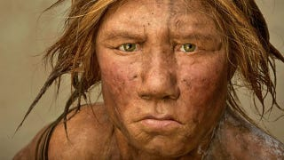 """Illustration for article titled Wanted: An """"extremely adventurous female human"""" to give birth to a Neandertal"""