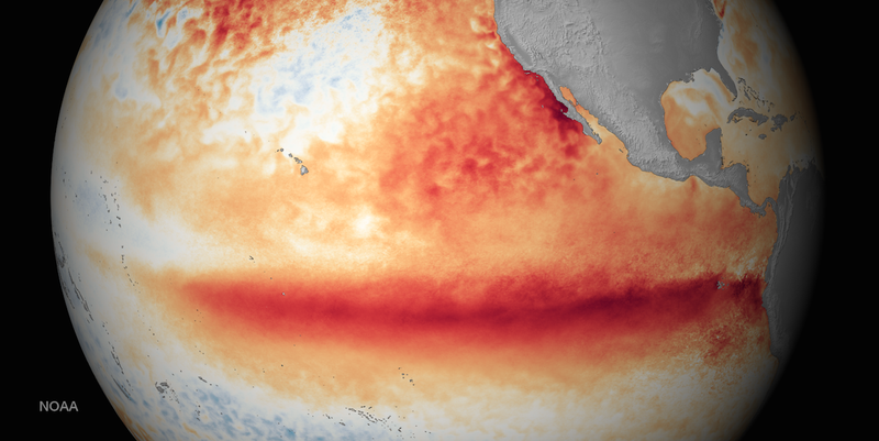 Illustration for article titled This Year's Godzilla El Niño Could Be the Worst Ever Recorded