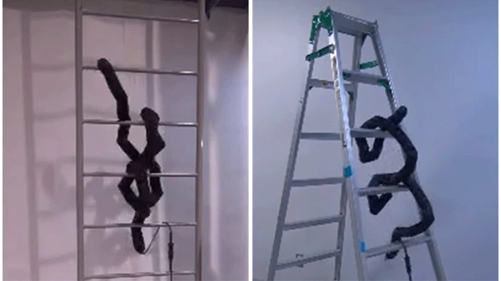 This Ladder-Climbing Robot Snake Freaks Me Out Even More Than the Real Thing