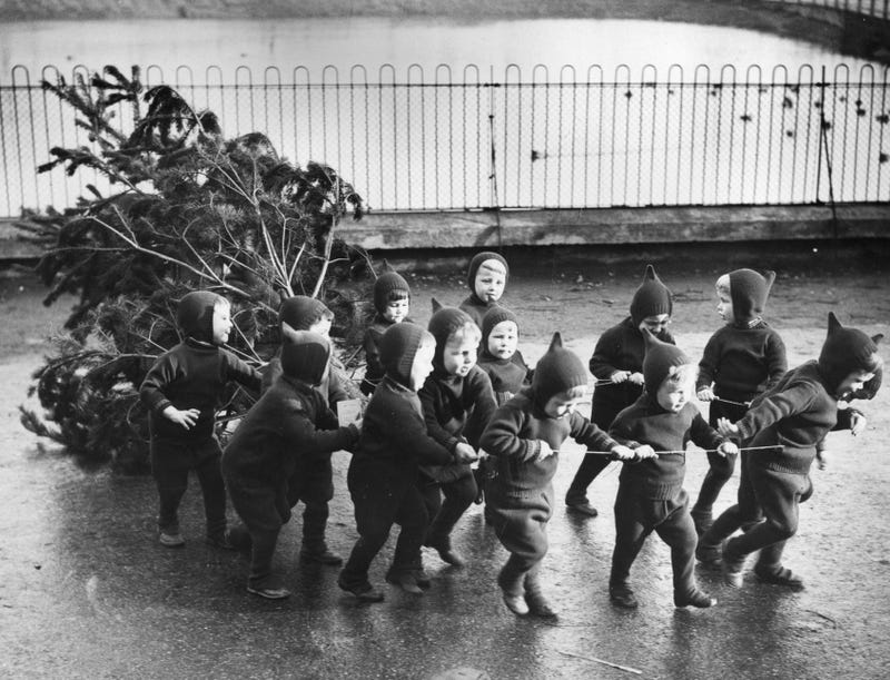 1938: Children from the Homeless Children's Aid And Adoption Society Home in London haul their Christmas tree. (Photo: Gerry Cranham/Fox Photos/Getty Images)