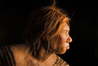 Illustration for article titled How did Neanderthal genes affect humanity? Here are some answers.