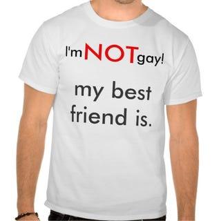 Best Friends Not Gay 114