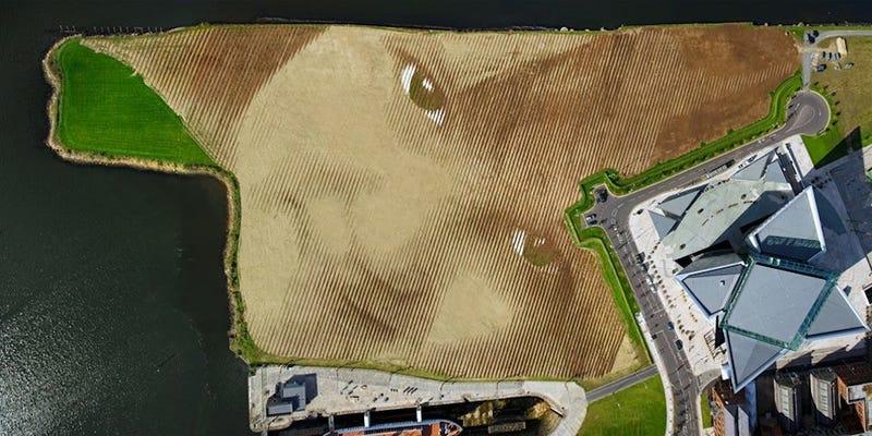 Illustration for article titled Un increíble retrato de 4 hectáreas que solo puedes ver desde el aire