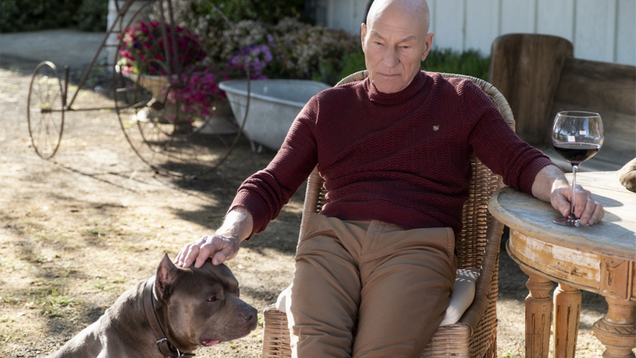 Jean-Luc Picard Is Back, But Is the Star Trek He Left Behind?