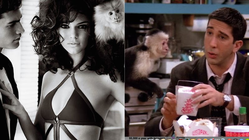 Illustration for article titled Who Loves Marcel the Monkey Best: Ross From Friends or Kendall Jenner?