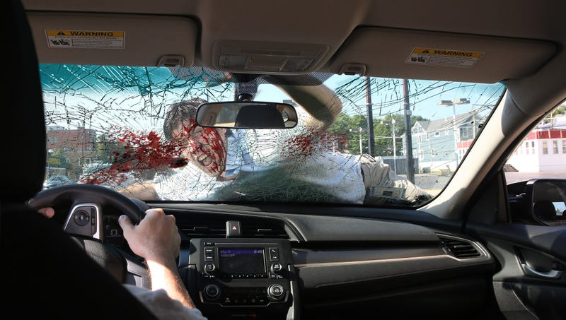 Researchers discovered a strong correlation between experiencing deep remorse and locking eyes with the terrified human clinging to the vehicle, spitting out blood and chipped teeth while pleading for mercy.